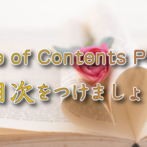 Table of Contents Plus設定方法